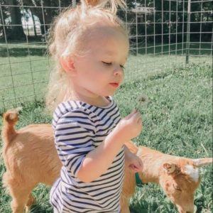Outdoor Toddler Favorites