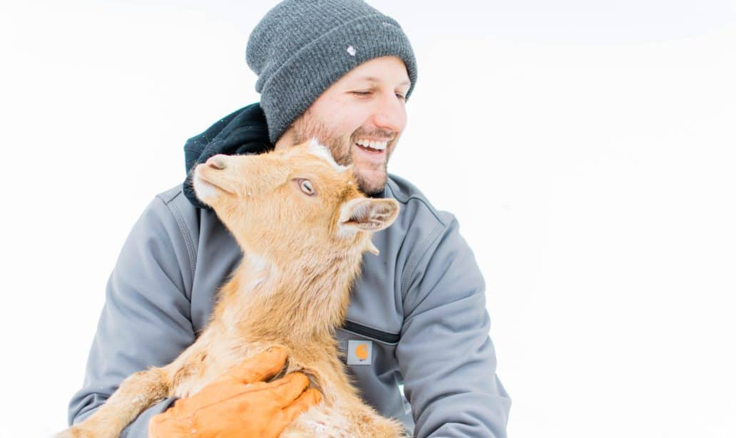 Frenchie Farm blog 5 reasons to get goats