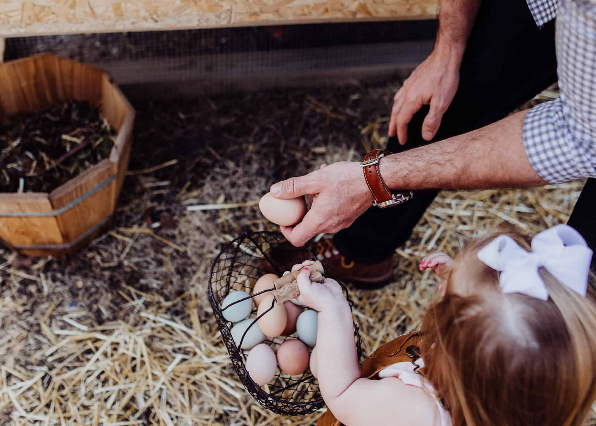 Frenchie Farm homesteading with kids how to homestead with kids