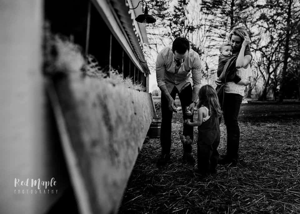 Frenchie Farm Red Maple Photography - lifestyle photography session