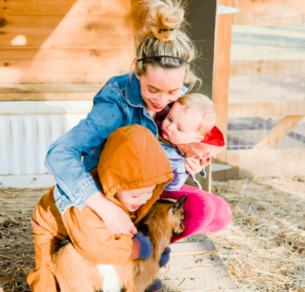 Frenchie Farm homestead blogging
