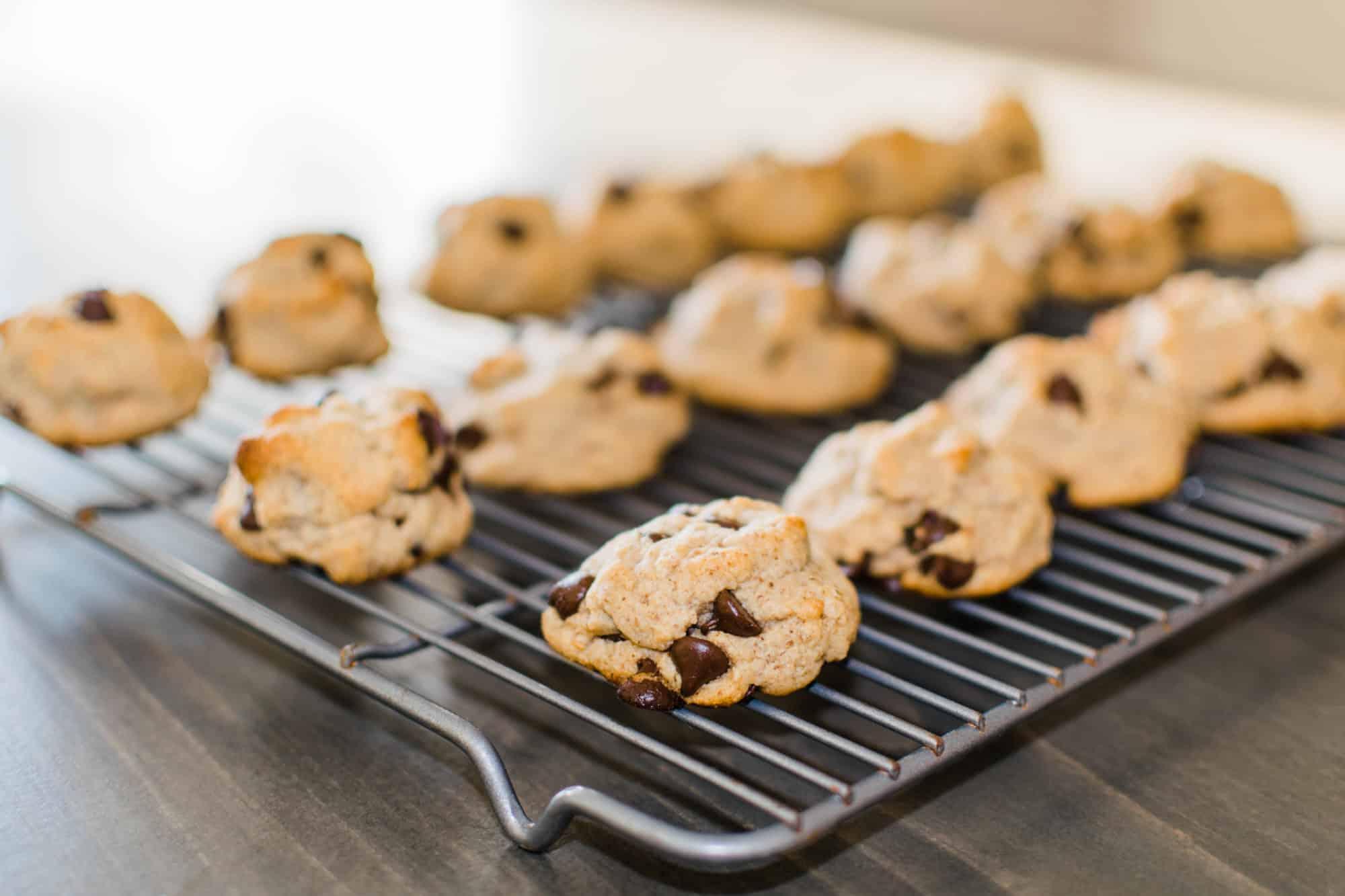 Frenchie Farm paleo chocolate chip cookies